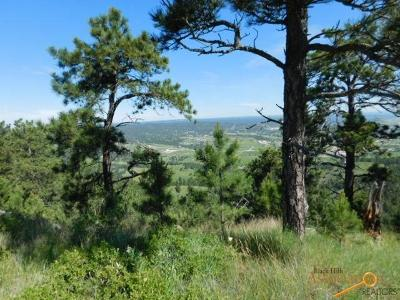 Residential Lots & Land For Sale: Tbd Brook Dr