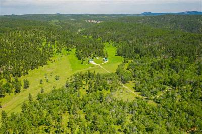 Residential Lots & Land For Sale: 10232