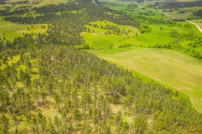 Hermosa Residential Lots & Land For Sale: 14011 Hwy 36