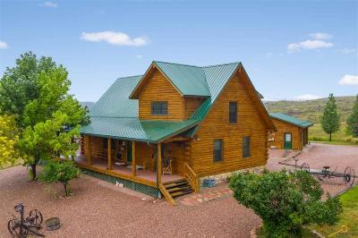 Single Family Home For Sale: 28025 Cascade Rd