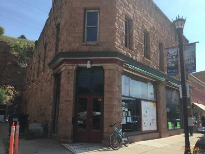 Commercial For Sale: 321 N River St