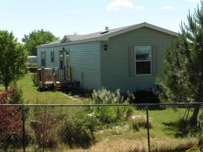 Manufactured Home For Sale: 100 S. D Ave S