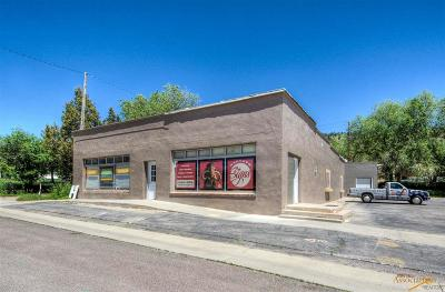 Hot Springs SD Commercial For Sale: $359,900