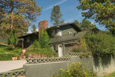 Rapid City Single Family Home For Sale: 4326 Minnekahta Dr