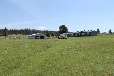 Manufactured Home For Sale: 25436 Sidney Park Rd