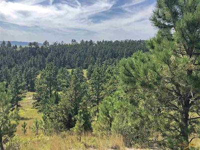 Residential Lots & Land For Sale: 11891