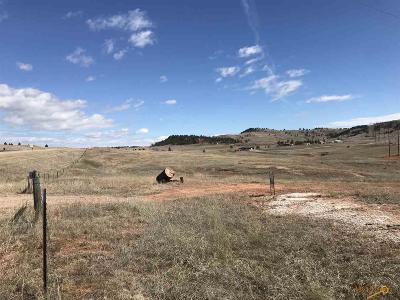 Residential Lots & Land For Sale: Hwy 385 Wind Cave Prky