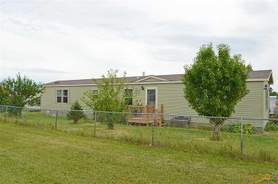 Manufactured Home For Sale: 100 S