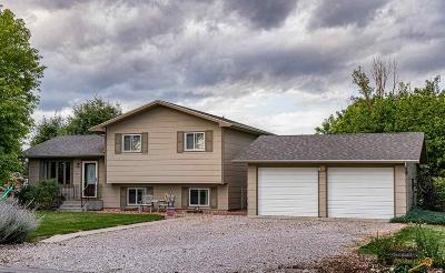 Rapid City Single Family Home For Sale: 904 Rosilee Ln