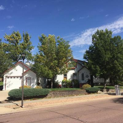 Pierre Single Family Home For Sale: 1022 W Elizabeth St