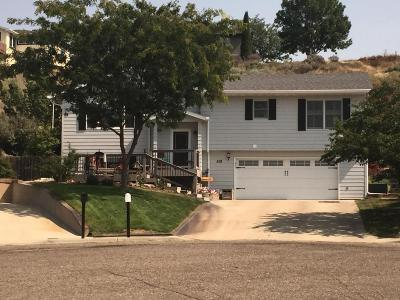Pierre Single Family Home For Sale: 518 Country Dr