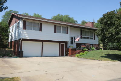 Pierre Single Family Home For Sale: 325 N Taylor Ave