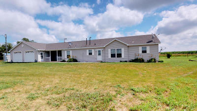 Alpena Single Family Home For Sale: 21818 394th Ave