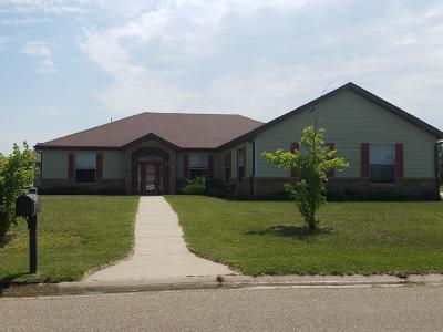 Huron Single Family Home For Sale: 2632 Prairie Green Dr