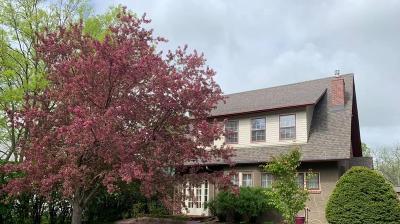Huron Single Family Home For Sale: 725 Dakota Ave S