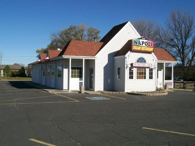 Mitchell Commercial For Sale: 1522 W Havens Ave