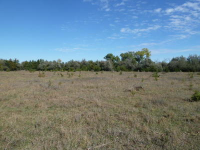 Residential Lots & Land For Sale: 397th Ave