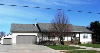 Mitchell Single Family Home For Sale: 816 W Norway