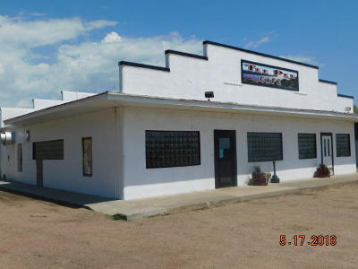 Commercial For Sale: 402 Us Hwy 46