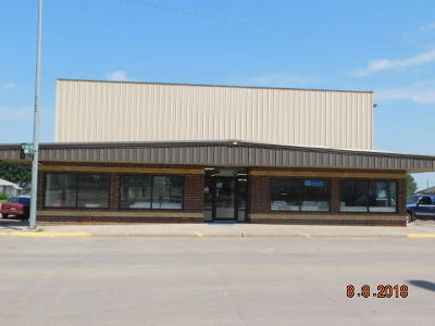 Commercial For Sale: 300 S Main Ave