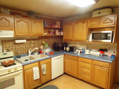 Mitchell SD Single Family Home For Sale: $102,500