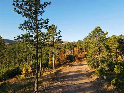 Deadwood, Lead Residential Lots & Land For Sale: Tract 1 Lot 2 Of South Dalo
