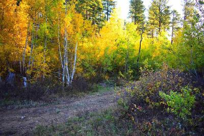 Deadwood, Lead Residential Lots & Land For Sale: Tract 2 Lot 2 Of South, Dalo