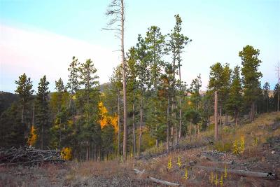 Deadwood, Lead Residential Lots & Land For Sale: Eagle No. 2