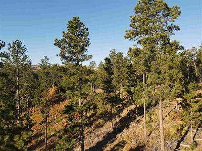 Deadwood, Lead Residential Lots & Land For Sale: Tract 1 0f Gold Edge No.3