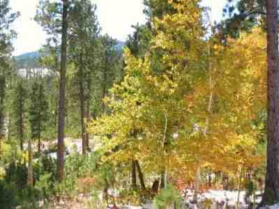 Deadwood, Lead Residential Lots & Land For Sale: Evergreen Estates Subdivision