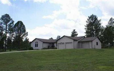 Custer SD Single Family Home Sold: $329,000
