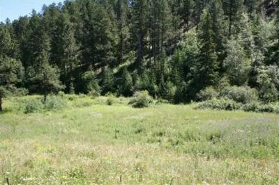 Deadwood SD Residential Lots & Land For Sale: $89,000