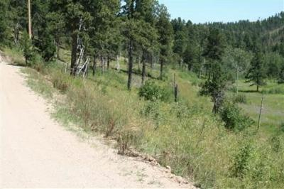 Deadwood SD Residential Lots & Land For Sale: $165,000