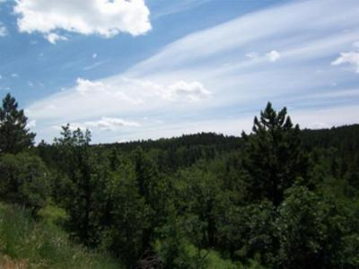 Spearfish SD Residential Lots & Land Sold: $33,750