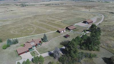 Spearfish Single Family Home For Sale: 5445 Lazy Horse