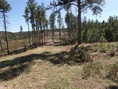 Deadwood Residential Lots & Land For Sale: Lot 3 -maine Rd Two Bit Springs Sub #2