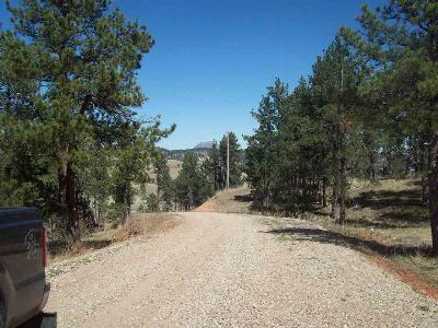 Sturgis Residential Lots & Land For Sale: Dolan Creek Rd