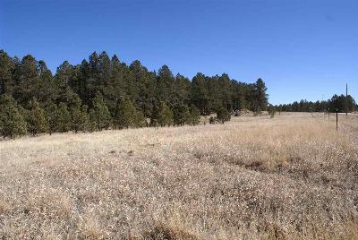Custer County Residential Lots & Land For Sale: Last Stand