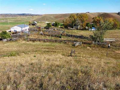 Spearfish SD Farm & Ranch For Sale: $1,260,000