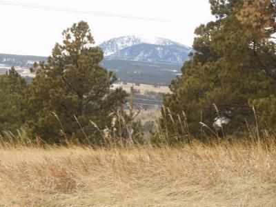 Spearfish SD Residential Lots & Land For Sale: $7,651,315