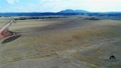 Spearfish SD Residential Lots & Land For Sale: $2,940,000