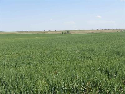 Newell SD Farm & Ranch For Sale: $149,960