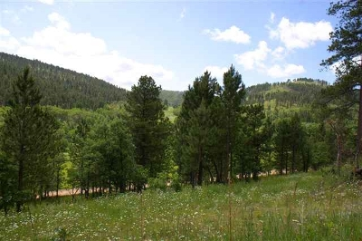 Deadwood Residential Lots & Land For Sale: Lot 31 Two Bit Ranch