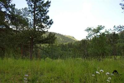 Deadwood Residential Lots & Land For Sale: Lot 30 Two Bit Ranch