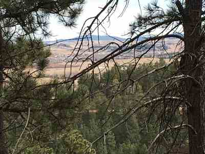 Spearfish SD Residential Lots & Land For Sale: $219,900