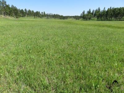 Custer Residential Lots & Land For Sale: Saginaw Road