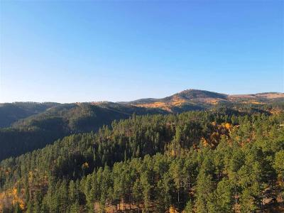 Deadwood, Lead Residential Lots & Land For Sale: Tract 4 Evergreen Estates