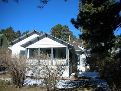 Single Family Home Uc-Contingency-Take Bkups: 738 Railroad