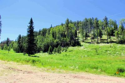 Deadwood, Lead Residential Lots & Land For Sale: Tract 72a Yellow Creek