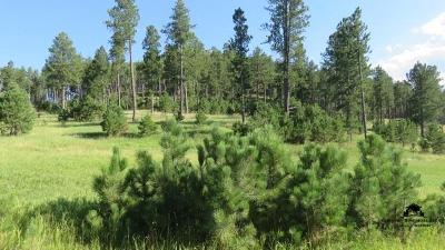 Custer Residential Lots & Land For Sale: Lot 1 Stagecoach Crossings